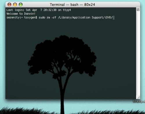 Terminal remove iDVD
