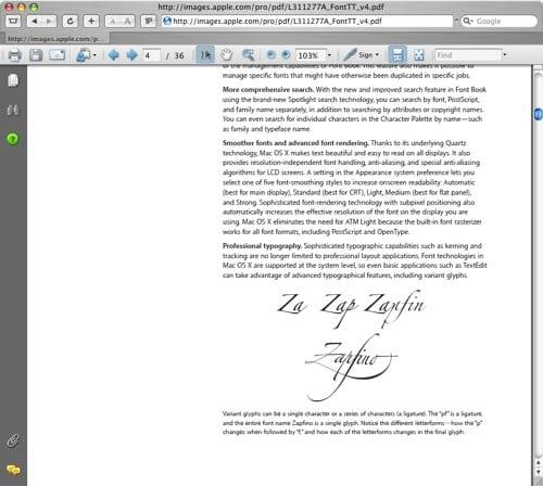 Safari PDF Plugin Adobe