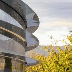 Apple Park 3 240x240 - Steny Apple Parku sú až príliš priehľadné, narážajú do nich zamestnanci
