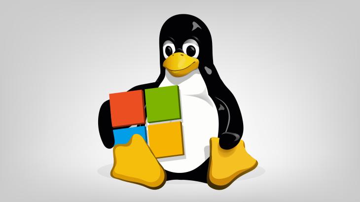 microsoft tux linux - Microsoft zvyšuje bezpečnosť IoT produktov s pomocou Linuxu