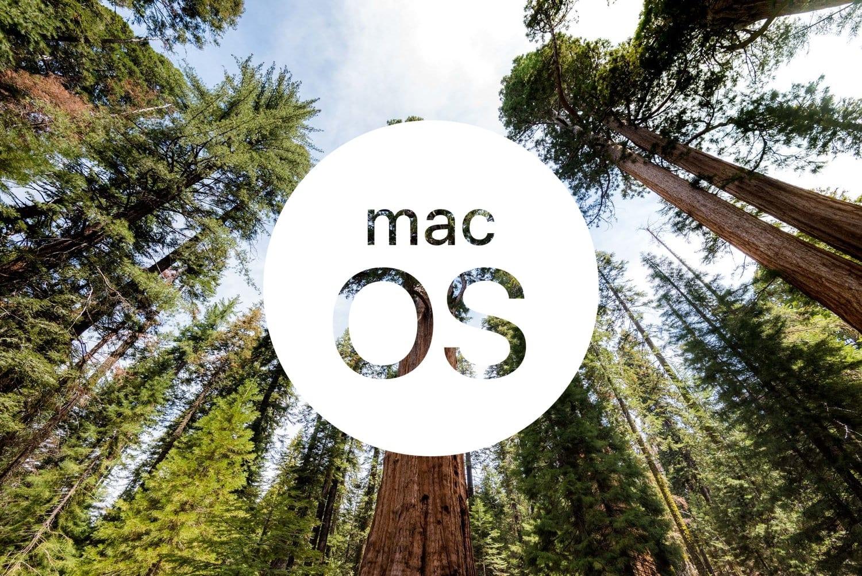 macOS 10.14 Sequoia koncept