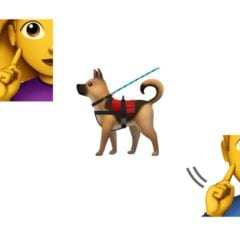 emoji 12 additions 2018 emojipedia 240x240 - Nové emoji pre rok 2019: vodiaci pes, hluchá osoba a viac párov