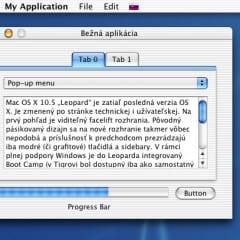 jaguarGUI 733 240x240 - Mac OS X 10.5: Jadro veci (recenzia Mac OS X Leopard)