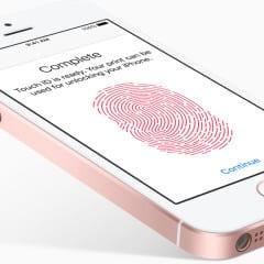 iphone se rosegold touch id large 240x240 - iPhone SE 2 by mohol ponúknuť väčší displej