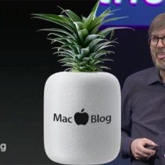 MacBlog Frky WWDC 2017 240x240 - WWDC 2017: Tie najlepšie reakcie z redakčného chatu