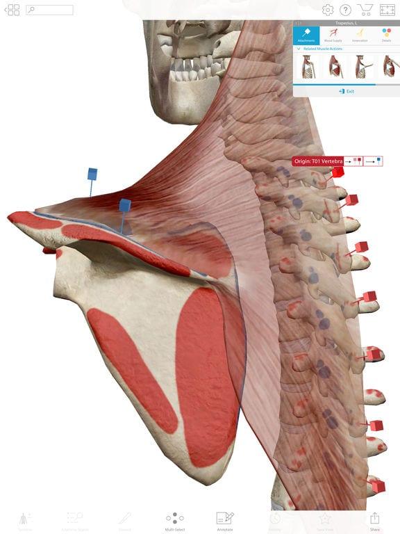 Human Anatomy - Zlacnené aplikácie pre iPhone/iPad a Mac #32 týždeň