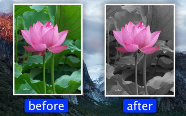 Photo Focus Splash Color Pro 600x375 - Zlacnené aplikácie pre iPhone/iPad a Mac #43 týždeň