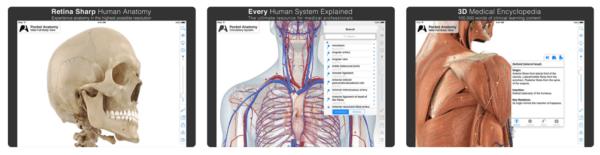 Pocket Anatomy 1 600x155 - Zlacnené aplikácie pre iPhone/iPad a Mac #19 týždeň