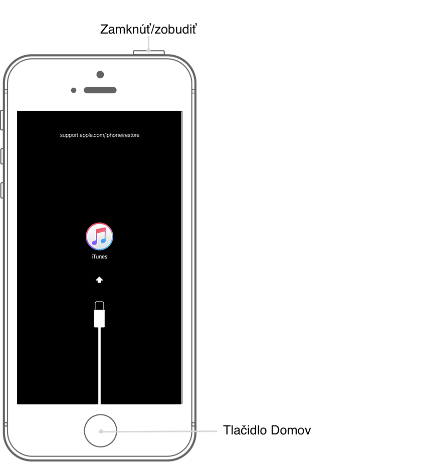 iOS recovery iPhone SE