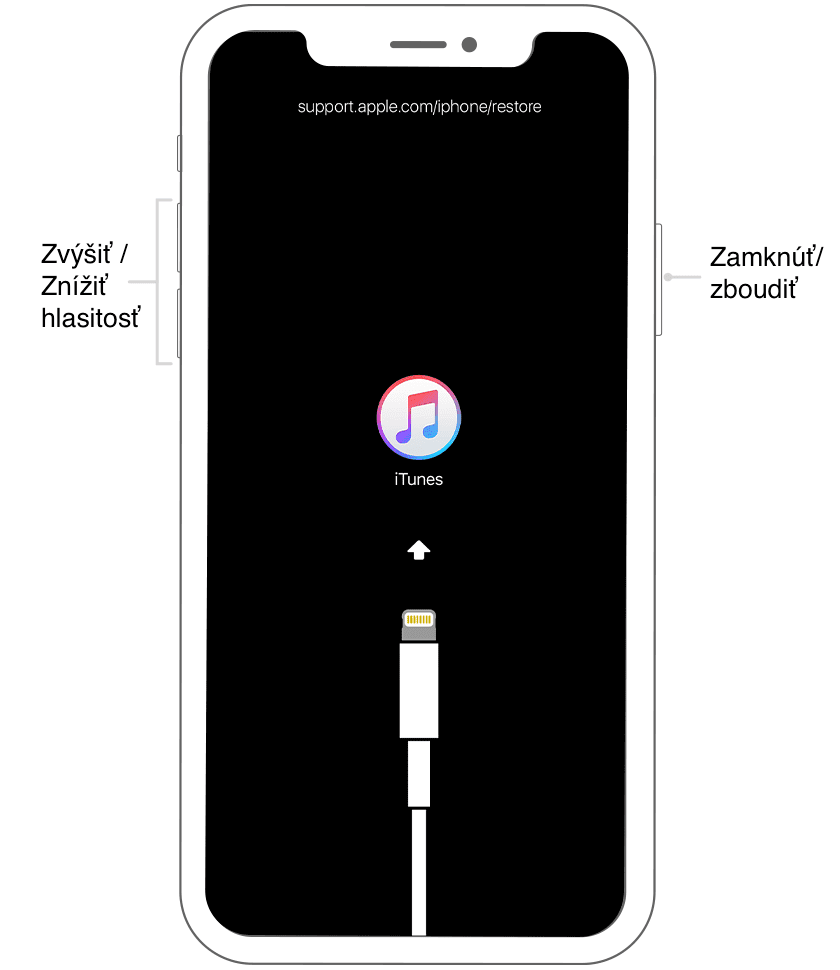 iOS recovery iPhone X