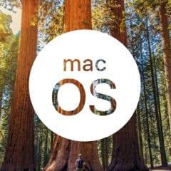 macOS sequoia graphic epic 240x240 - Ako sa bude volať macOS 10.14? Apple si registroval ďalšie potenciálne názvy