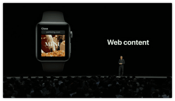 watchOS 5 WebKit