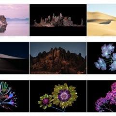 macOS mojave wallpapers 240x240 - Stiahnite si vyše 20 nových pozadí z macOS Mojave