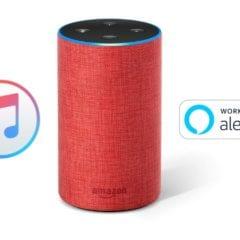 apple music echo 240x240 - Apple Music již funguje na reproduktorech Amazon Echo s Alexou, bohužel zatím jen v USA