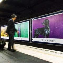 shotoniphone sydney australia 2 240x240 - Apple spúšťa súťaž o najlepšie iPhone fotografie