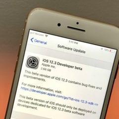 iOS 12 3 update 3 240x240 - Apple včera vydal iOS 12.3 beta 6