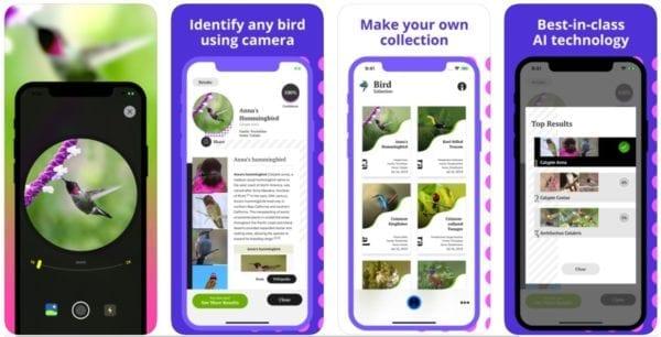 Bird Identification 600x306 - Zlacnené aplikácie pre iPhone/iPad a Mac #31 týždeň